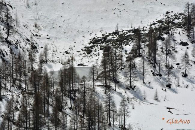 Alpe Larecchio - lago
