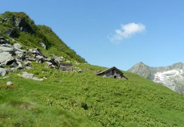 Sentiero  Alpe Colmetto