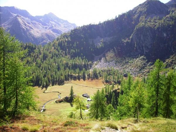 Sentiero Bivio sul sentiero 201-Pian del Celletto