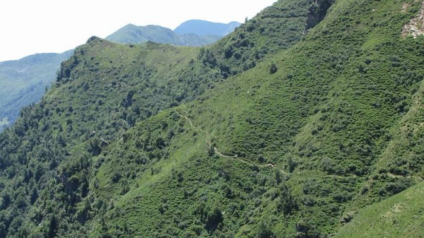 Sentiero Alpe Balma in Mezzo-Alpe Castello