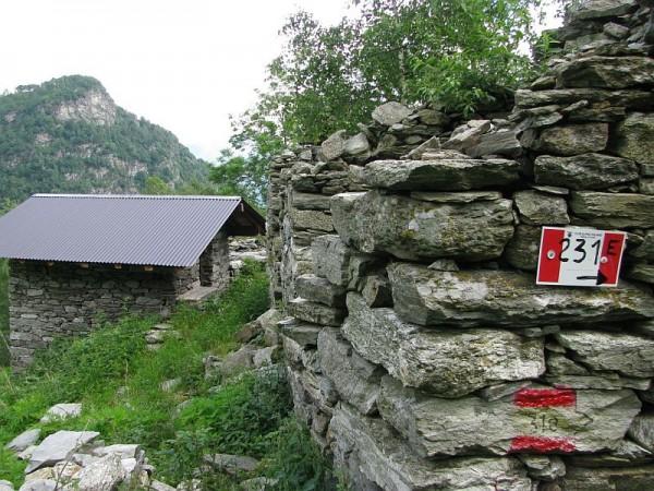 Sentiero Raccordo tra i sentieri 231 e 232 all'Alpe Sella di Bedino