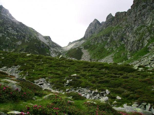 Sentiero Vallone dell'Artorto