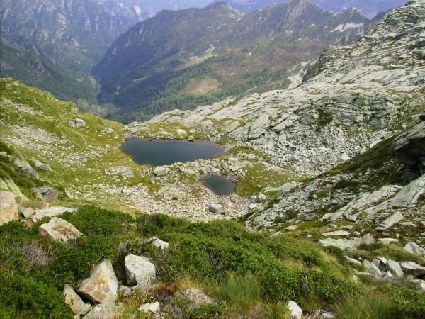 Sentiero Alpe Selletti - Passo della Gronda