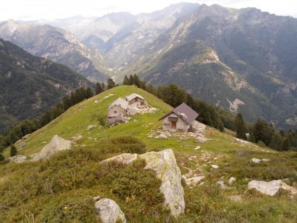Sentiero Alpe Piano d'Ales (Sella delle Piode Nere)