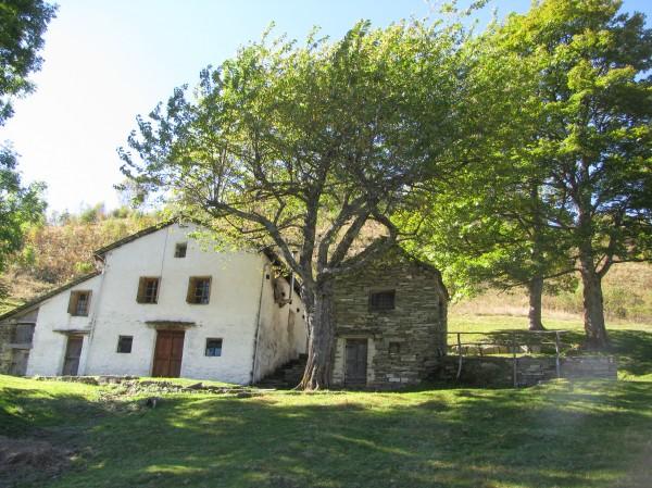 Sentiero Raccordo per Cima Massero dall'Alpe Seccio