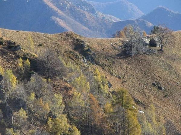 Sentiero Alpe Campello - Alpe Campo