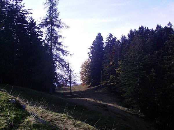 Sentiero Sella di Camplasco