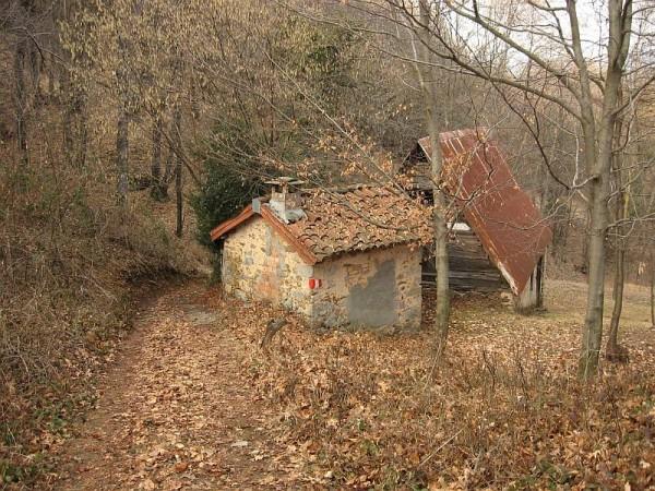 Sentiero Isolella - itinerario 716 (San Bernardo)