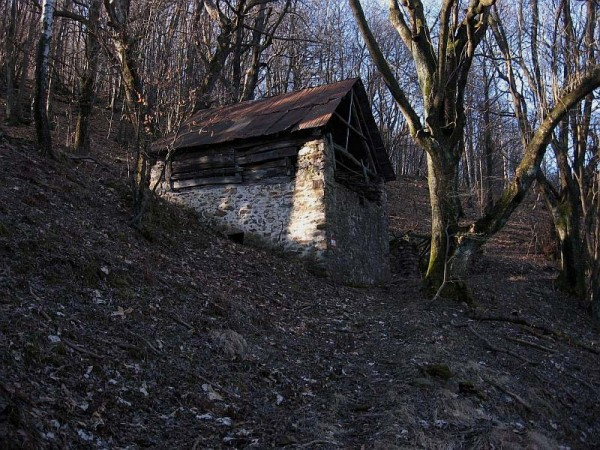 Sentiero Colle dell'Arbolone