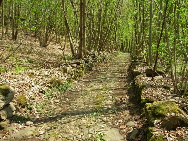 Sentiero Monte Carrue