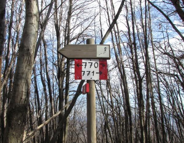 Sentiero Ara - Itinerario 770 (Monte Fenera)